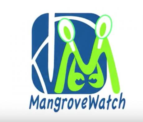 Mangrove Watch - Extended Clip